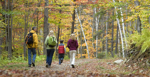 Want to Feel Well? Walk in Nature.